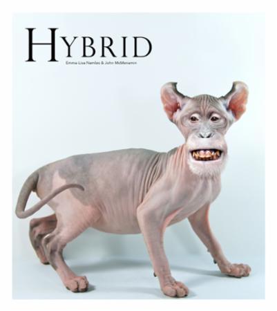 """""""Hybrid"""" av Emma-Lisa Namløs"""