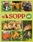 """""""Sopp"""" av Till R. Lohmeyer"""