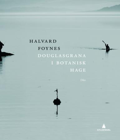 """""""Douglasgrana i Botanisk hage - dikt"""" av Halvard Foynes"""