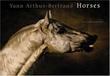 """""""Horses"""" av Yann Arthus-Bertrand"""