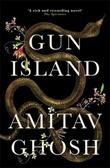 Omslagsbilde av Gun island