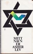 """""""Mitt navn er Asher Lev"""" av Chaim Potok"""
