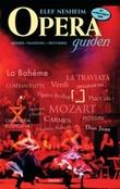 """""""Operaguiden musikk, handling, historikk"""" av Elef Nesheim"""